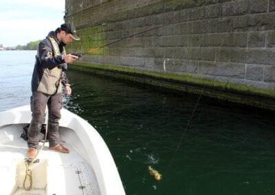Hotspot gefunden: Der erste Dorsch kommt ans Boot!