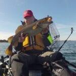 Dorsch angeln vom Kajak in der Ostsee
