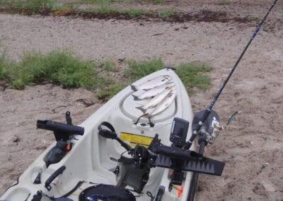 Vom Seekajak angeln an der Ostsee