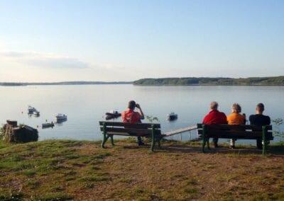 Wale beobachten? Geht bei uns direkt vom Campingplatz aus!